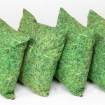 Grass Scatter Cushions set of 4 1