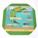 Frog Lifecycle Outdoor Mat 2
