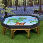Butterfly Lifecycle Outdoor Mat 1
