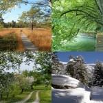Four Seasons Outdoor Mat 3