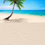 Desert Island Supergiant Playmat 1
