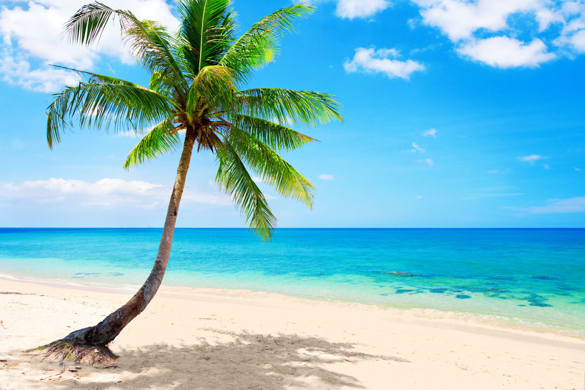 Ipad Wallpaper Beach Scenes: Sport And PlaybaseSport And Playbase