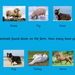 Wall Panel Farm Animals 1