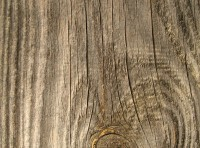 Natural Wooden Plank