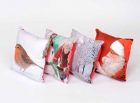 Winter Scatter Cushions set of 4