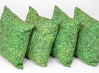 Grass Scatter Cushions set of 4