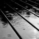 Images in Nature – Black & White Rain 1