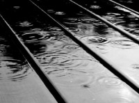Images in Nature – Black & White Rain