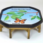 Butterfly Lifecycle Outdoor Mat 3