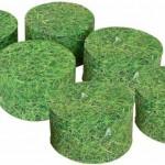 Grass Buffets set of 6 1